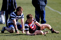 Rosslyn Park 7's_011_LC_6855