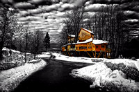 """Alnwick Treehouse in Winter - Selective Colour"""